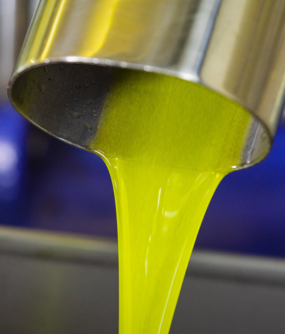 olio-ravida